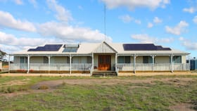 Rural / Farming commercial property for sale at Lot 6285 Warding Road Badgin WA 6302