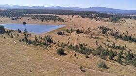 Rural / Farming commercial property for sale at 705 Kaputar Road Narrabri NSW 2390