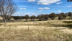 Rural / Farming commercial property for sale at 874 Ramah Road Tenterden NSW 2365