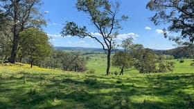 Rural / Farming commercial property for sale at 203 Horderns Road Bowral NSW 2576