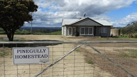 Rural / Farming commercial property for sale at 672 Greenmantle Road Bigga NSW 2583