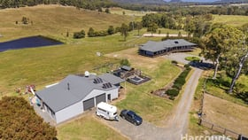 Rural / Farming commercial property for lease at 238 Halloran Road North Arm Cove NSW 2324
