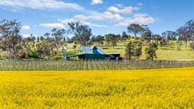 Rural / Farming commercial property for sale at 390 Cornella-Toolleen Road Toolleen VIC 3551
