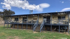 Rural / Farming commercial property for sale at 200 Collins Road Numeralla NSW 2630
