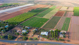 Rural / Farming commercial property for sale at 124 South River Road South Plantations WA 6701