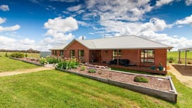Rural / Farming commercial property for sale at 600 Hawthornes Tree Road Crookwell NSW 2583