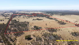 Rural / Farming commercial property for sale at 2 Murphy's Lane Toolleen VIC 3551