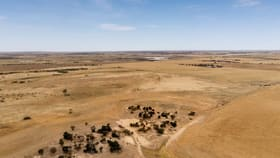 Rural / Farming commercial property for sale at Sec 309 Burzacott Road Mulgundawa SA 5255