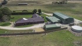 Rural / Farming commercial property for sale at 1359 Glenelg River Road Caveton SA 5291