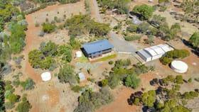 Rural / Farming commercial property for sale at Lot 1, 161 Blocks Road Riverton SA 5412