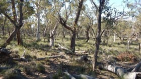 Rural / Farming commercial property for sale at Lot 9 Shannons Flat Road Cooma NSW 2630