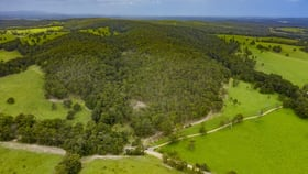 Rural / Farming commercial property for sale at 1391 The Branch Lane North Arm Cove NSW 2324