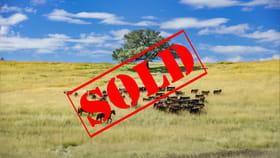Rural / Farming commercial property for sale at 1128 Back Creek Road Upper Horton NSW 2347