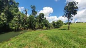 Rural / Farming commercial property for sale at 219 Camp Creek Road Camp Creek QLD 4871