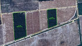 Rural / Farming commercial property for sale at LOT 66 48 Ruddells Road Dergholm VIC 3312