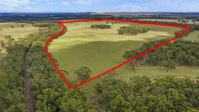 Rural / Farming commercial property for sale at 3896 HENTY HIGHWAY Milltown VIC 3304