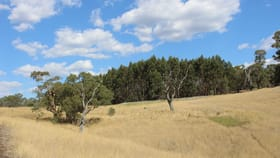 """Rural / Farming commercial property for sale at """"Tallengower"""" Tallengower Road Chetwynd VIC 3312"""
