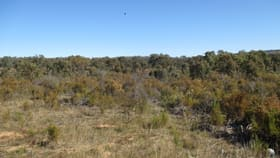 Rural / Farming commercial property for sale at 0 Dalyenong Road Stuart Mill VIC 3477