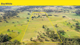 Rural / Farming commercial property for sale at 525 Manifold Road North Casino NSW 2470
