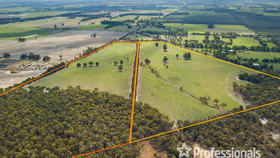 Rural / Farming commercial property for sale at Lots 101 & 102 Goulden Road Sabina River WA 6280
