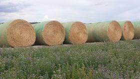 Rural / Farming commercial property for sale at Lot 94 Braunacks Road Naracoorte SA 5271