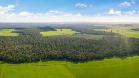 Rural / Farming commercial property for sale at 64 D Addinsall Road Macarthur VIC 3286