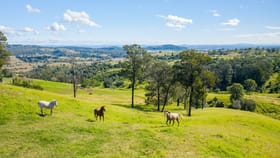 Rural / Farming commercial property for sale at 220 Tallegalla Two Tree Hill Road Tallegalla QLD 4340