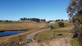 "Rural / Farming commercial property for sale at ""RAMAH""  874 RAMAH ROAD Guyra NSW 2365"