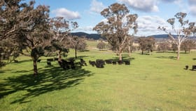 Rural / Farming commercial property for sale at 1054 Middle Arm Road Goulburn NSW 2580