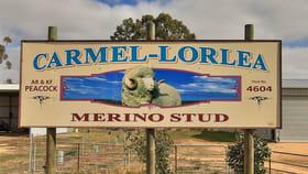Rural / Farming commercial property for sale at Lot 1 TP821696 Tulkara Railway Road Landsborough West VIC 3384