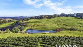 Rural / Farming commercial property for sale at 848 Range Road Glenquarry NSW 2576