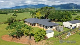 Rural / Farming commercial property for sale at 488 Walter Lever Estate Road Walter Lever Estate QLD 4856