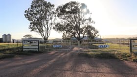 Rural / Farming commercial property for sale at 85 Rosser Road Peak Hill NSW 2869