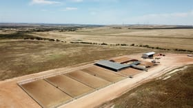 Rural / Farming commercial property for sale at Badgingarra WA 6521