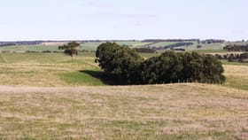 Rural / Farming commercial property for sale at 100 Rogers Road Paschendale VIC 3315