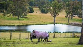 Rural / Farming commercial property for sale at 416 Wyndham Lane Kanoona NSW 2550