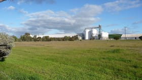 Rural / Farming commercial property for sale at Lot 50 KNOTTS ROAD (Balladong) York WA 6302