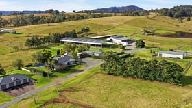 Rural / Farming commercial property for sale at 974 Luskintyre Road Lambs Valley NSW 2335