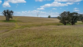 Rural / Farming commercial property for sale at 'Highview' Binni Creek Road Woodstock NSW 2793