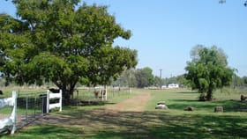 Rural / Farming commercial property for sale at 5 McHenry Road Acacia Hills NT 0822