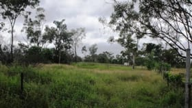 Rural / Farming commercial property for sale at 53/56 Pelican Creek Road Collinsville QLD 4804