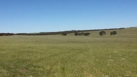 Rural / Farming commercial property for sale at Lot 6 Cockshell Road Bowhill SA 5238