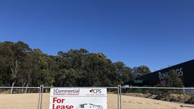 Showrooms / Bulky Goods commercial property for lease at 3/Lot 13 Cook Drive Coffs Harbour NSW 2450
