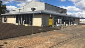 Showrooms / Bulky Goods commercial property for lease at 18138 Warrego Highway Dalby QLD 4405