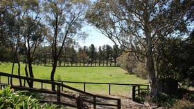 Rural / Farming commercial property for lease at Lot 4 Hume Highway Sutton Forest NSW 2577