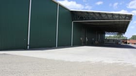 Showrooms / Bulky Goods commercial property for lease at 369 Stewart Street Bathurst NSW 2795