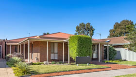 Offices commercial property for lease at 20 McLachlan Street Horsham VIC 3400