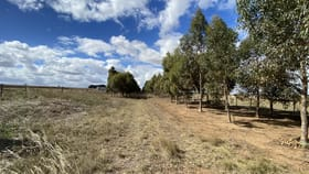 Rural / Farming commercial property for lease at 797 Ryans Lane Melton VIC 3337