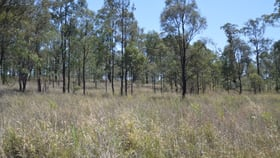 Development / Land commercial property sold at Lot 21 Piercefield Road Mount Thorley NSW 2330