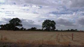 Factory, Warehouse & Industrial commercial property for sale at 0 Abbey Road Penola SA 5277